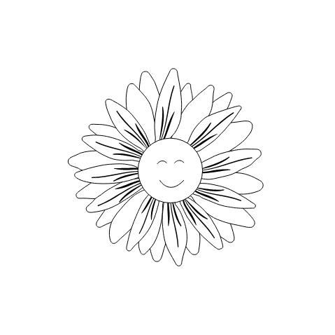 icon-jolimentvous-ecommerce-site-pretaporter-graphiste-webdesigner-freelance-strasbourg-studio-polette-04