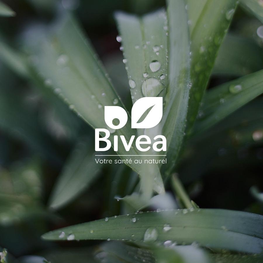 Site e-commerce Bivea